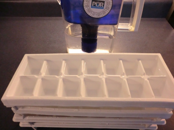 Four ice cube trays of filtered water.