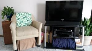 "TV on TV Stand ""Surround Sight, Not Surround Sound"" frugalfish.org"