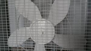 Clean fan.