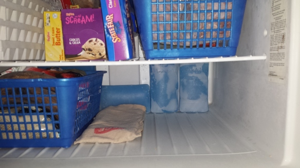 Ice packs in back of freezer.