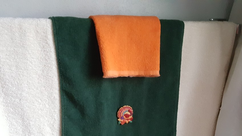 """Turkey PIn on Towels """"Indian Summer Thanksgiving"""" frugalfish.org"""