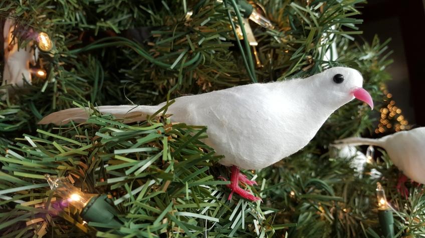 "Christmas Dove ""Can You Guess My Christmas Theme"" frugalfish.org"