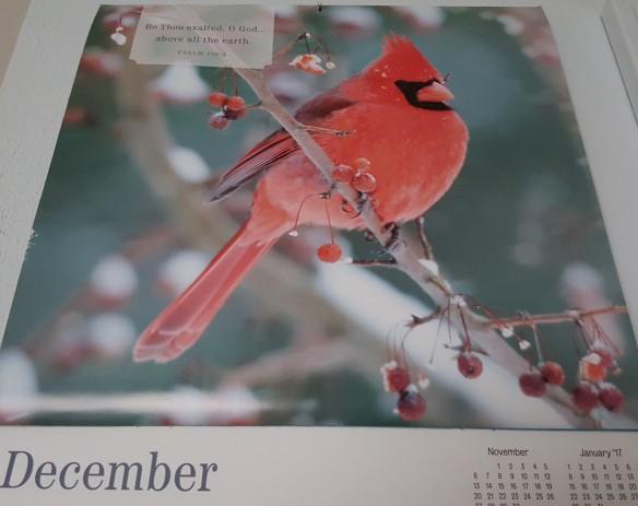 "December calendar ""Goodbye 2016"" frugalfish.org"