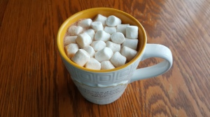 """Homemade Hot Chocolate """"Kid Tested, Mother Approved Hot Chocolate Mix"""" frugalfish.org"""
